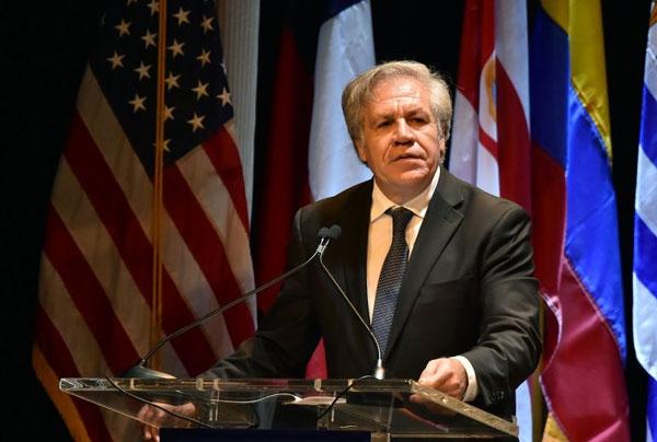 CUBA: Luis Almagro denuncia atropellos del régimen cubano contra la disidencia. La dictadura cubana ha recrudecido la persecución y el hostigamiento contra opositores, periodistas independientes y otros miembros de la sociedad civil cubana. cubademocraciayvida.org  http://www.cubademocraciayvida.org/web/folder.asp?folderID=136